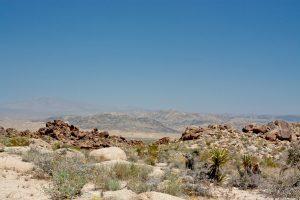 Marche désert